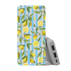 Carregador Portátil Power Bank (10000mAh) - Lemon Farm